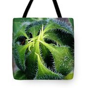 Preparing To Bloom Tote Bag