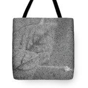 Preserved In Stone Tote Bag