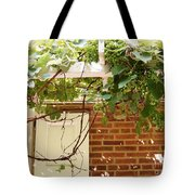President Buchanan Home Tote Bag