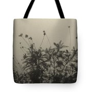 Pressed Daisy Bush Yellow Tote Bag
