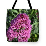 Pretty Blooming Pink Phlox Flowers In A Garden Tote Bag