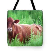 Pretty Brown Cow  Tote Bag