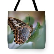Pretty Butterfly Resting On The Leaf Tote Bag