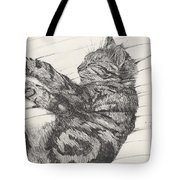 Pretty Collie Beastie Tote Bag