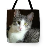 Pretty Girl Kitty Tote Bag