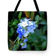 Pretty In Blue Photograph Tote Bag