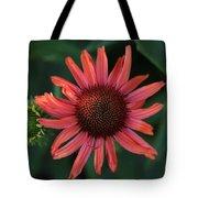 Pretty In Coral Tote Bag