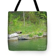 Pretty In Green Tote Bag