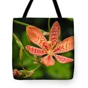 Pretty In Orange Tote Bag