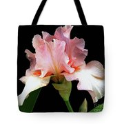 Pretty In Pink - Bearded Iris Tote Bag