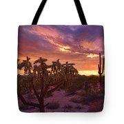 Pretty In Pink Desert Skies  Tote Bag