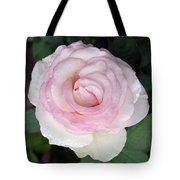 Pretty In Pink Rose Tote Bag
