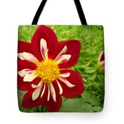 Pretty In Red Tote Bag