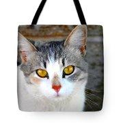 Pretty Kitty Tote Bag