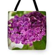 Pretty Lilac Bush Tote Bag