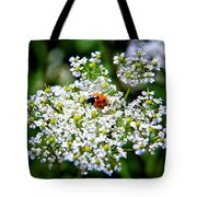 Pretty Little Ladybug Tote Bag by Mariola Bitner