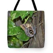 Pretty Morpho Butterfly Resting In A Butterfly Garden  Tote Bag