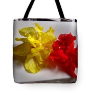 Pretty Pair - Double Hibiscuss Tote Bag