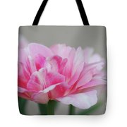 Pretty Pale Pink Parrot Tulip Flower Blossom Tote Bag