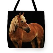 Pretty Palomino Pony Tote Bag