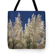 Pretty Pampas Tote Bag