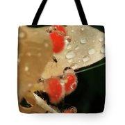 Pretty Peach Hibiscus  Tote Bag