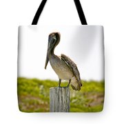 Pretty Pelican Tote Bag