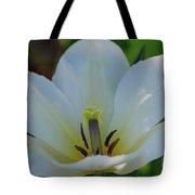 Pretty Perfect White Tulip Flower Blossom In The Spring Tote Bag