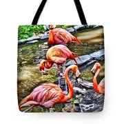 Pretty Pink Flamingos Tote Bag