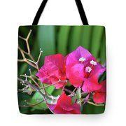 Pretty Pink Flowers 2 Tote Bag