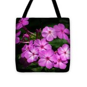 Pretty Pink Phlox  Tote Bag