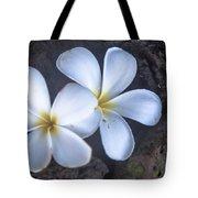 Pretty Plumeria Tote Bag