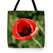 Pretty Poppy Tote Bag