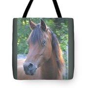 Pretty Profile Tote Bag