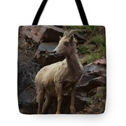 Pretty Proud Tote Bag by Barbara Schultheis