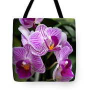 Pretty Purple And White Tote Bag
