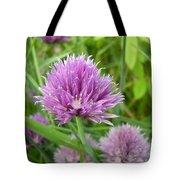 Pretty Purple Chive Flower Tote Bag