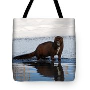 Pretty Reflecting Mink Tote Bag