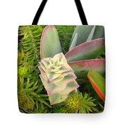 Pretty Succulents Tote Bag