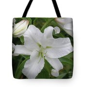 Pretty White Lilies Blooming In A Garden Tote Bag