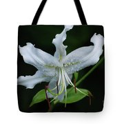 Pretty White Stargazer Lily Flower Blossom Tote Bag