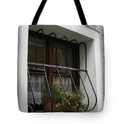 Pretty Window Tote Bag
