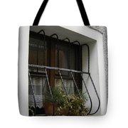 Pretty Window Tote Bag