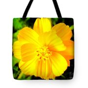 Pretty Yellow Flower On Black Background Tote Bag