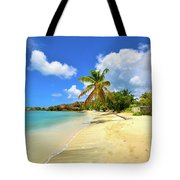 Prickly Bay Wide Tote Bag