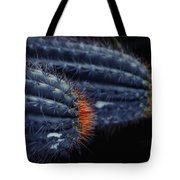 Prickly Hooters Tote Bag