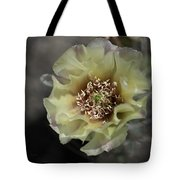 Prickly Pear Blossom 3 Tote Bag by Roger Snyder