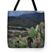 Prickly Pear Cacti Rancho Sierra Vista Satwiwa Mountains Tote Bag