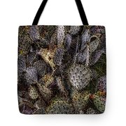 Prickly Pear Cactus At Tonto National Monument Tote Bag