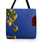 Primary Colors Tote Bag